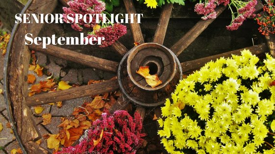 Wagon wheel and fall flowers