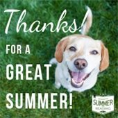 """Photo of smiling dog, wording """"Thanks for a great summer"""""""