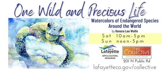 Sat, 1/2 & Sun 1/3/2021 Last weekend to visit the One Wild and Precious Life Exhibit at The Collective
