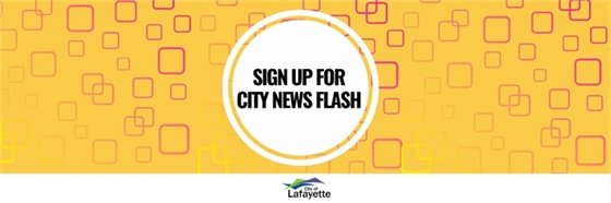 City News Flash