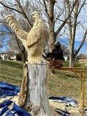 Leub Popoff Tree Carvings