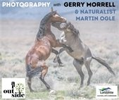 Photography outside with Gerry Morrell and Naturalist, Martin Ogle