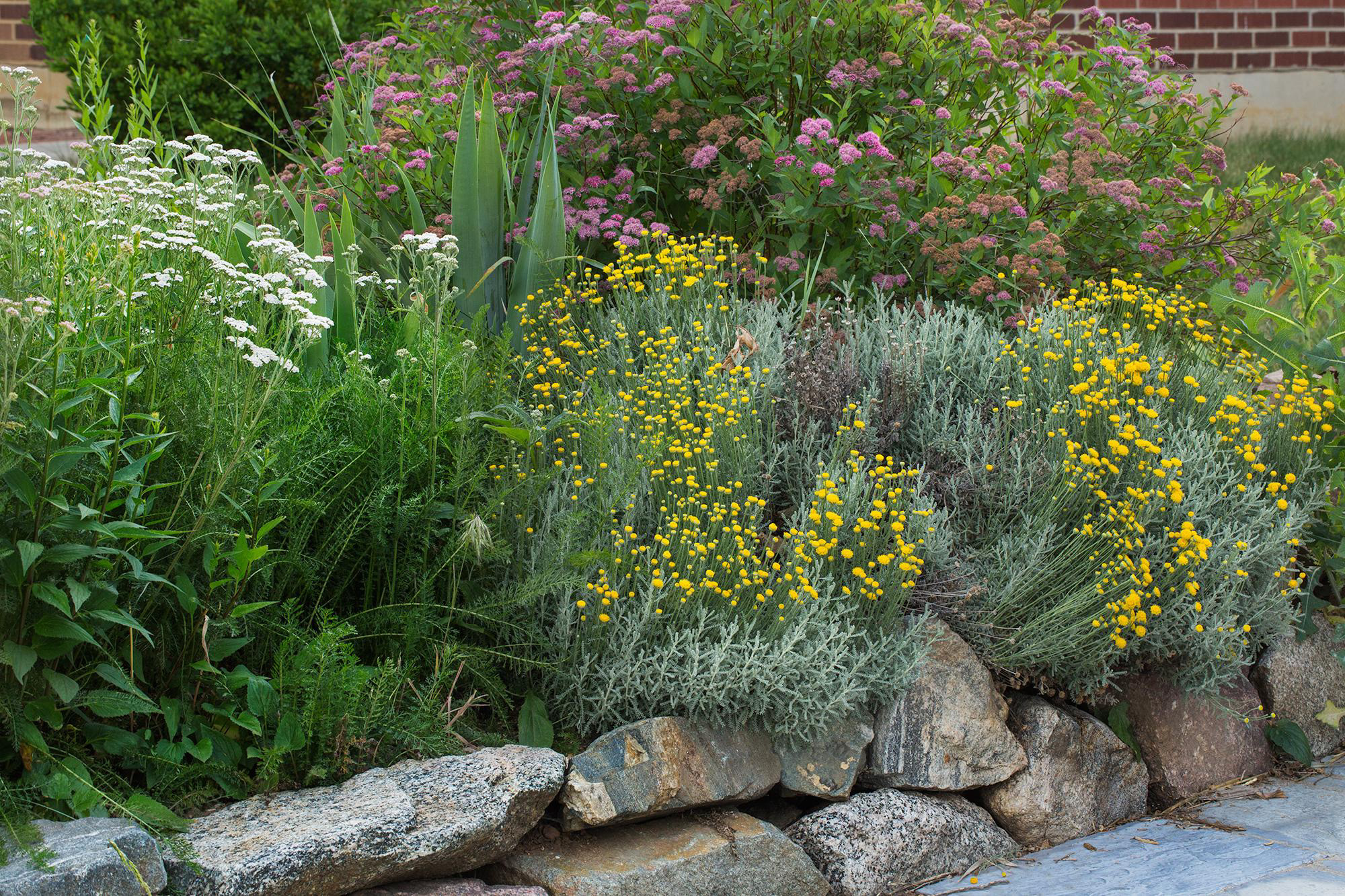 2015 Garden In A Box Lafayette CO Official Website