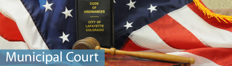 Municipal Court website header