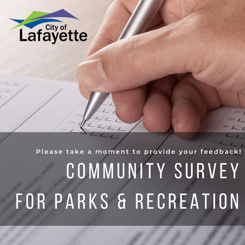 Parks and Rec Survey_sq graphic