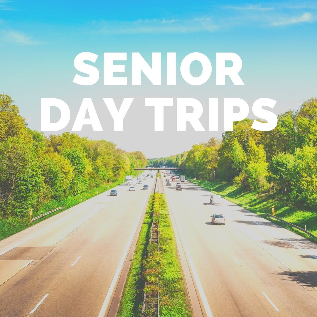 Image of the highway, with Senior Day Trips