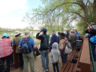 birding at greenlee wildlife preserve