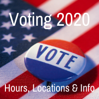 Voting 2020 - learn more