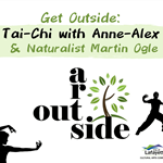 Arts Outside Tai Chi