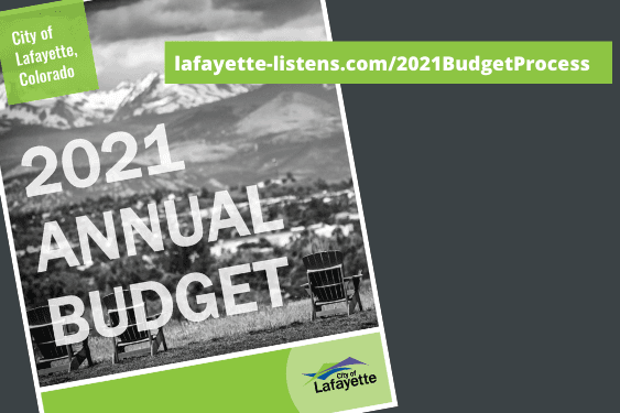 2021 annual budget graphic