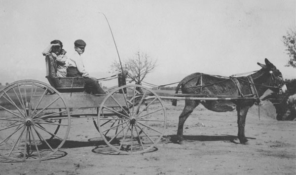 A woman and a boy sitting in a cart hitched to a burro