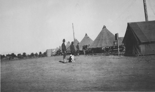 Army camp in Lafayette, with soldiers and a dog