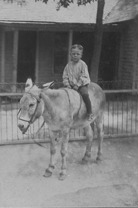 Victor Liscomb, about three years old, riding a donkey