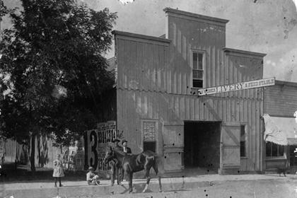 Webber Livery and Feed Stable