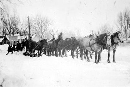 Dan Jones and a team of horses in the snow