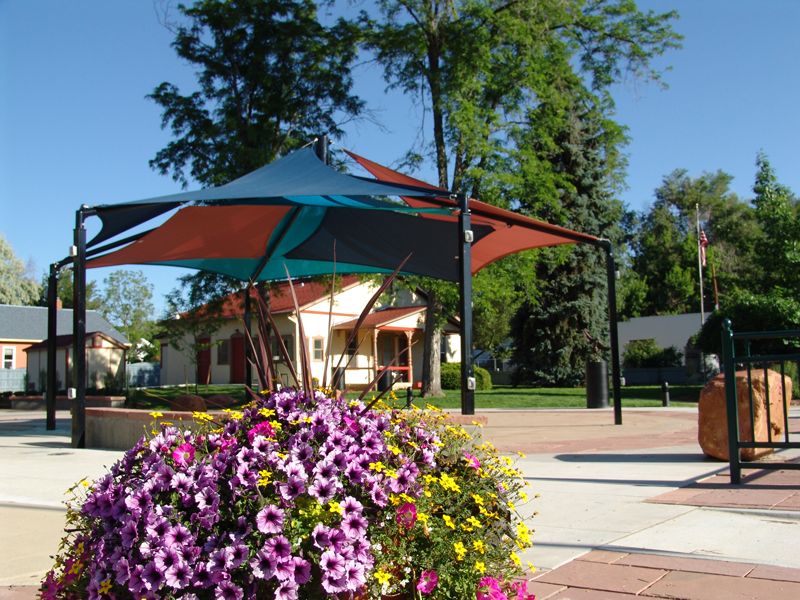 Purple flowers with the Festival Plaza shade structure