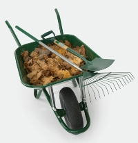 leaf drop off